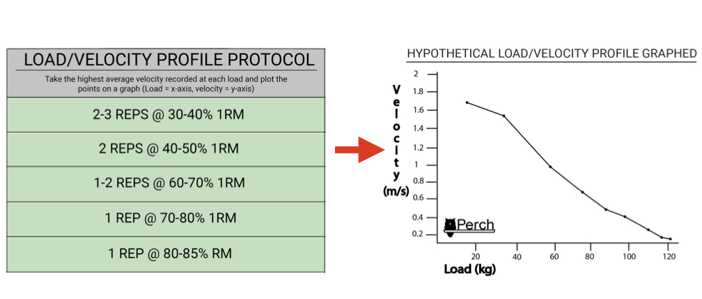 Protocol and subsequent hypothetical graph adapted from Gonzalez-Badillo (2017)[3].